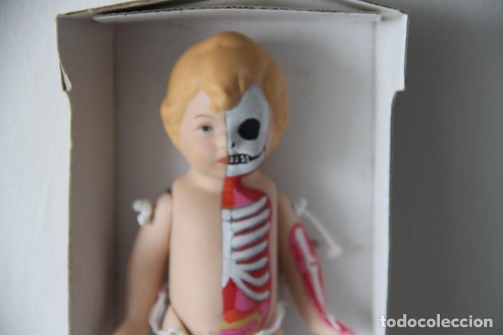 Muñecas Porcelana: Muñeco bebé de porcelana pintado a mano a lo figura anatómica. Pieza única. - Foto 3 - 218724323