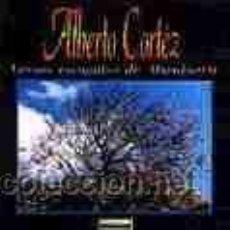 CDs de Música: ALBERTO CORTEZ CD ALMAFUERTE PORTADA ALTERNATIVA DESCATALOGADO . Lote 18356037