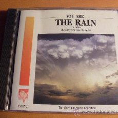 CDs de Música: IRIS GILLON ( YOU ARE THE RAIN) CD 1989 USA (CD14). Lote 34532680