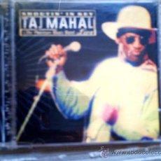 CDs de Música: CD TAJ MAHAL & THE PHANTOM BLUES BAND LIVE: SHOUTIN´ IN KEY. Lote 38521863