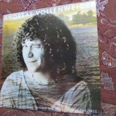 CDs de Música: LP DE VINILO DE ANDREAS VOLLENWEIDER-TITULO BEHIND THE GARDENS- ORIGINAL DEL 82- 9 TEMAS- ¡¡NUEVO¡¡. Lote 46147648