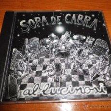 CDs de Música: SOPA DE CABRA AL.LUCINOSI CD ALBUM DEL AÑO 1994 CONTIENE 12 TEMAS ROCK CATALAN MUY RARO. Lote 49964274
