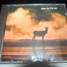 CDs de Música: TIGER BY THE TAIL – TIGER BY THE TAIL [CD, 2006] BORED! THE SAILORS. Lote 54484359