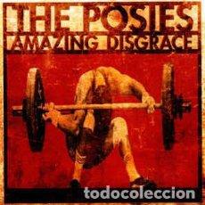 CDs de Música: THE POSIES – AMAZING DISGRACE. Lote 63034768