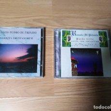 CDs de Música: LOTE 2 CD RENATO DI PRINZIO SAMNITA FRENTANORUM 1995 PUEDO VERTE ENTRE LAS ESTRELLAS 1996. Lote 87208772