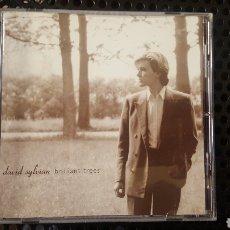 CDs de Música: CD - DAVID SYLVIAN - BRILLIANT TREES - 94636 30722. Lote 115068987