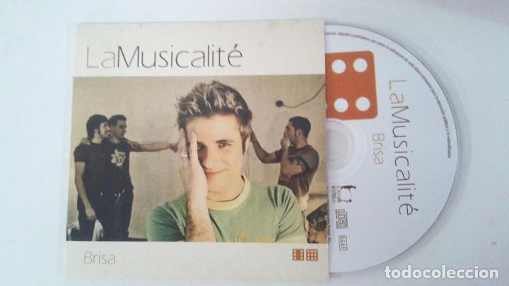 musicalite brisa