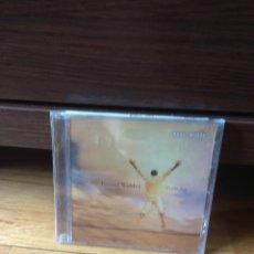 CD de Música: RUSSEL WALDER PURE JOY PRECINTADO. Lote 126465018