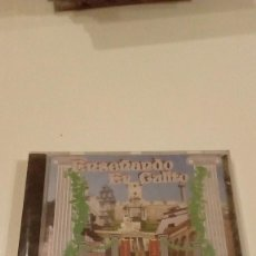 CDs de Música: C-PFD84 CD MUSICA CARNAVAL DE CADIZ ENSEÑANDO ER CULITO NUEVO PRECINTADO. Lote 130217735