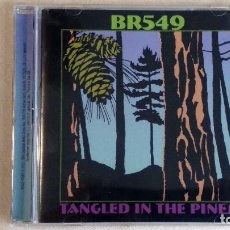 CDs de Música: BR549 - TANGLED IN THE PINES - CD. DUALTONE MUSIC. AÑO 2004 . Lote 136308070