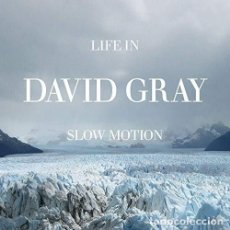 CDs de Música: DAVID GRAY - LIFE IN SLOW MOTION - CD . Lote 151492930