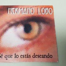 CDs de Música: 519- HERMANO LOBO SE QUE LO ESTAS DESEANDO CD SINGE PROMO. Lote 163054018