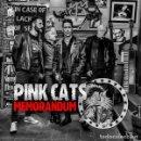 CDs de Música: PINK CATS - CD MEMORÁNDUM. Lote 165183298