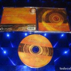 CDs de Música: SPIRIT OF AUSTRALIA ( TERRY OLDFIELD ) - CD - NE 3010 - NEW EARTH - LIVING THE DREAMTIME .... Lote 171621500