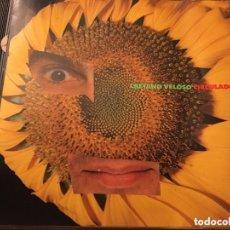 CDs de Música: CAETANO VELOSO - CIRCULADÔ (CD, ALBUM) (POLYGRAM) 510639-2 ED BRASIL. Lote 174263838