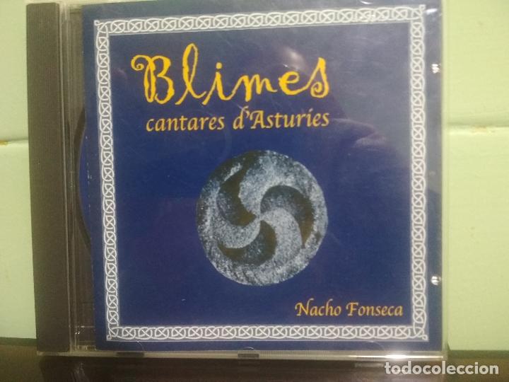 CD FONO ASTUR NACHO FONSECA BLIMES CANTARES D ASTURIES ASTURIAS PEPETO (Música - CD's Country y Folk)