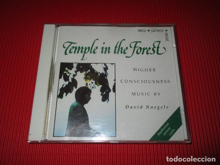 CDs de Música: TEMPLE IN THE FOREST - CD - NWCD 312 - NEW WORLD MUSIC - DAVID NAEGELE - Foto 2 - 191203203