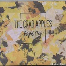 CDs de Musique: THE CRAB APPLES - RIGHT HERE / CD ALBUM / MUY BUEN ESTADO RF-4492. Lote 193165617
