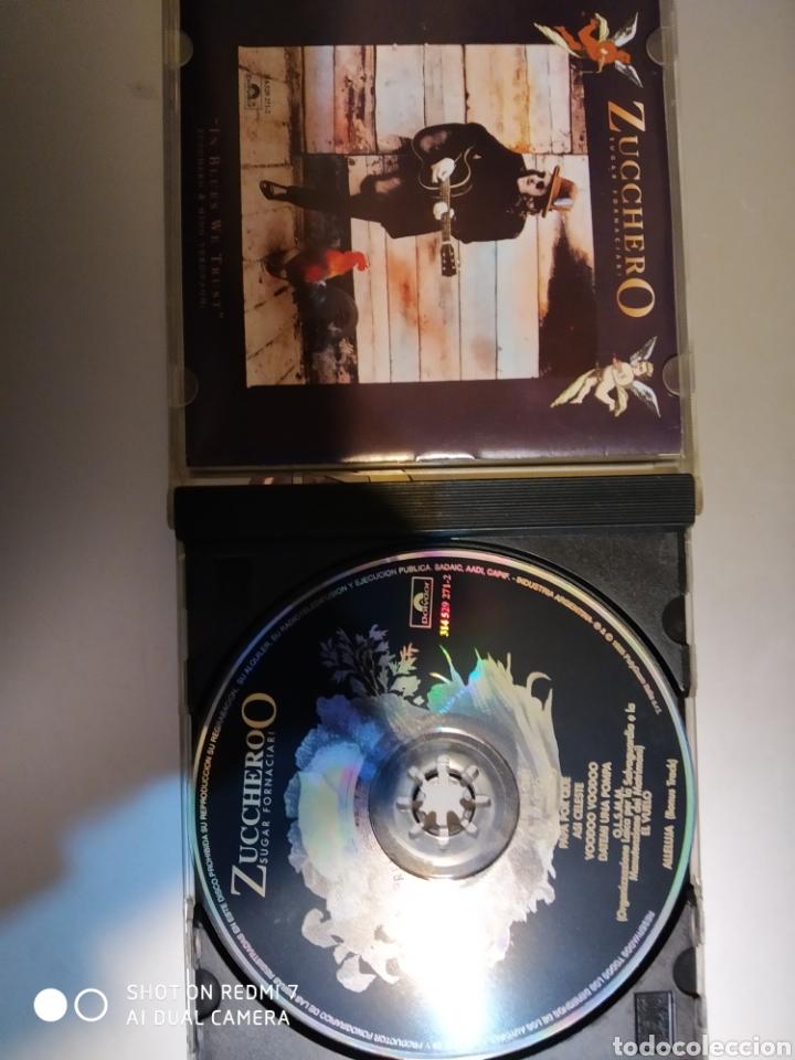 CDs de Música: Zucchero sugar fornaciari. Spiritodivino - Foto 3 - 194894565