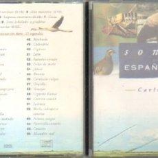 CDs de Música: SONIDOS EN LA ESPAÑA SALVAJE. CD-VARIOS-1784. Lote 218199047