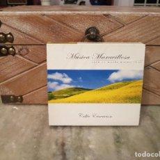 CDs de Música: CD DE MÚSICA CELTA. Lote 222014876
