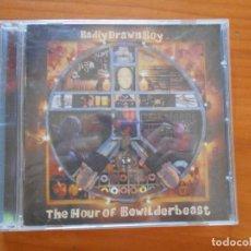 CDs de Música: CD BRADLY DRAWN BOY - THE HOUR OF BEWILDERBEAST (5R). Lote 222026626