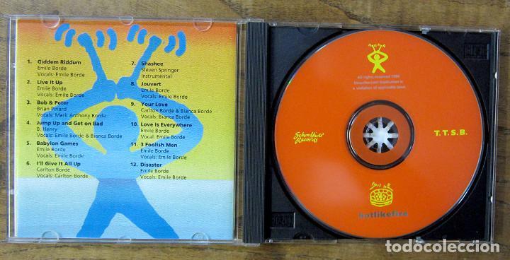 CDs de Música: TRINIDAD TRIPOLI STEEL BAND - HOT LIKE FIRE - 1994 - REGGAE, SOCA, CALYPSO - Foto 2 - 222667762