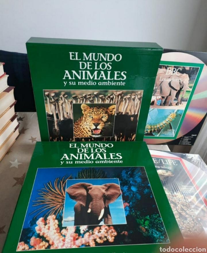 DISCOS DE VINILLO EL MUNDO DE LOS ANIMALES 20 DISCOS (Música - CD's Otros Estilos)