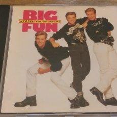 CDs de Música: BIG FUN CD A POCKETFUL OF DREAMS 1990 STOCK AIKEN WATERMAN SEGUNDAMANO OFERTA + 5 € ENVIO C.N. Lote 236738475
