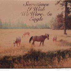 CD di Musica: BILL CALLAHAN – SOMETIMES I WISH WE WERE AN EAGLE. Lote 241523955