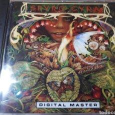 CDs de Música: SPYRO GYRA MORNING DANCE. Lote 261856905