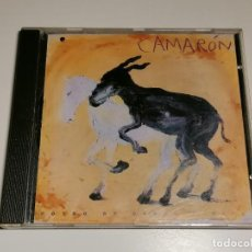 CDs de Música: CAMARON POTRO DE RABIA Y MIEL CD. Lote 267891954