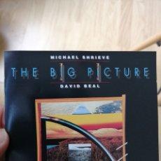 CDs de Música: MICHAEL SHRIEVE - DAVID BEAL - THE BIG PICTURE (FORTUNA RCDS, 1989). Lote 287776753