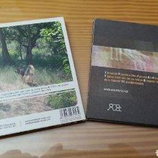 CDs de Música: LOTE DE 2 CD,S DE OSCAR BRIZ. Lote 288082723