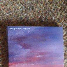 CDs de Música: PORCUPINE TREE , METANOIA , CD 2006 UK , DIGIPACK , ROCK PROGRESIVO. Lote 289314573