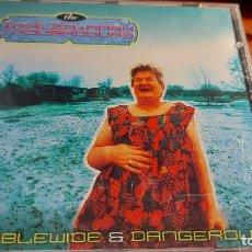 CDs de Música: CD.DE DE TRAILER PARK. Lote 289515558