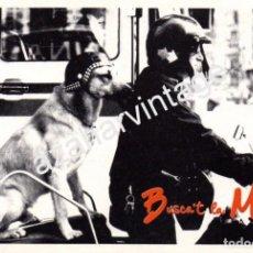 Fotos de Cantantes: BARCELONA, 1988,BUSCA`T LA MIDA!, REVERSO AUTOGRAFO DE LOQUILLO, MUY RARA. Lote 98159483