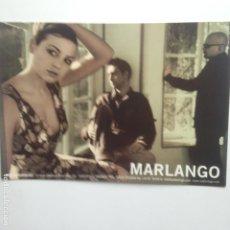 Fotos de Cantantes: MARLANGO - FOTO PROMOCIONAL SUBTERFUGE RECORDS. Lote 204230088