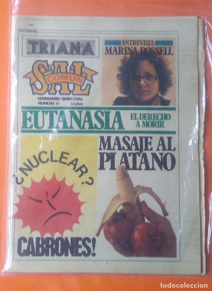 SAL COMÚN Nº 18 AÑO 1979 TRIANA,IMÁN,MARINA ROSELL... (Música - Revistas, Manuales y Cursos)