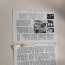 Revistas de música: NT 2 HOJAS 2 PAGINAS HISTORIA ROCK USA BUDDY HOLLY GENE VINCENT RITCHIE VALENS. Lote 222238487