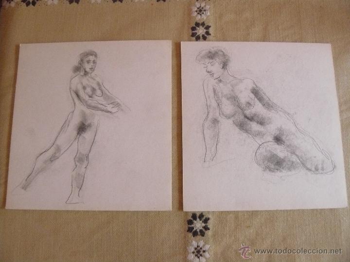 DIBUJOS A LÁPIZ Y CARBONCILLO - DESNUDOS FEMENINOS (S) (Artículos Nuevos)