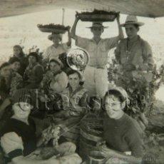 Nuevo: ANTIGUA FOTOGRAFIA DE LA VENDIMIA EN TORREBLANCA CASTELLON. Lote 194330026