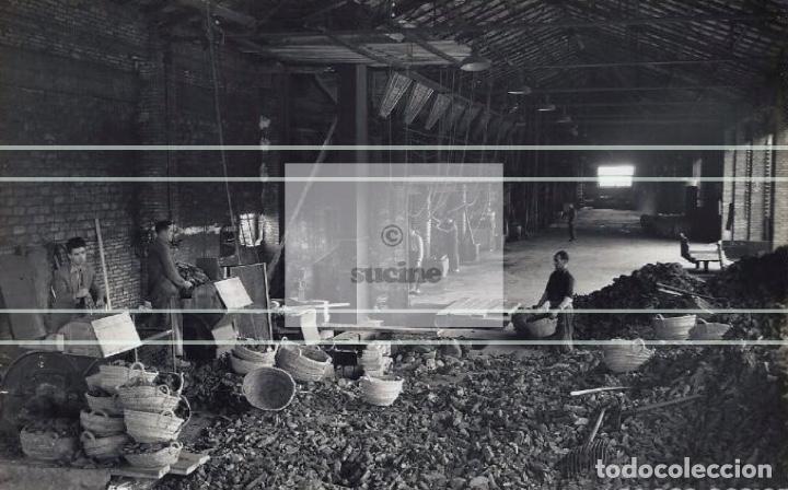 Nuevo: MAGNIFICA COLECCIÓN DE 90 FOTOGRAFIAS ANTIGUAS DE VALL DE UXÓ - Foto 82 - 194882457