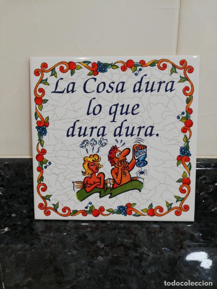 CO - AZULEJO CON REFRÁN . (Artículos Nuevos)