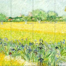 Nuevo: PA-236 FIELD WITH FLOWERS NEAR ARLES-VINCENT VAN GOGH (1888). Lote 244950105