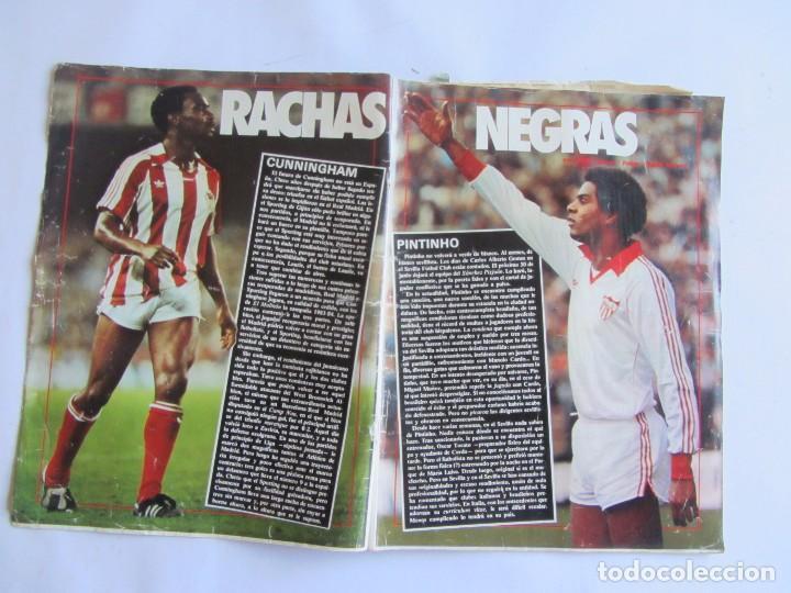 Coleccionismo deportivo: REVISTA DON BALÓN Nº445 1984 Gordillo/Informe basket R. Madrid-Barcelona - Foto 2 - 64844147