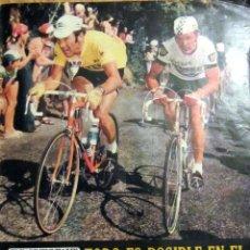 Coleccionismo deportivo: AS COLOR 217 1975 REAL MADRID CAMPEON COPA POSTER DI STEFANO GUERINI TOUR DE FRANCIA. Lote 83611396
