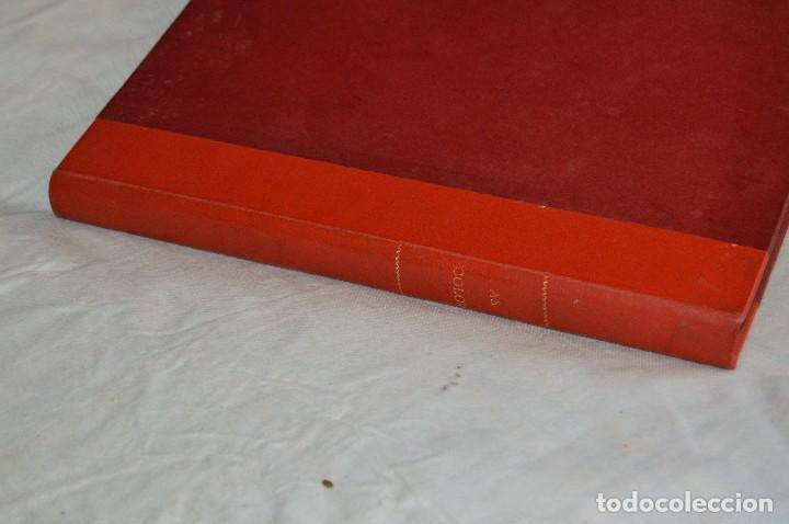 Coleccionismo deportivo: VINTAGE - ANTIGUO TOMO AS COLOR - 11 NÚMEROS - DEL 5 AL 14 Y UN EXTRAORDINARIO - AÑO 1 PUBLICACIÓN - Foto 7 - 118450435