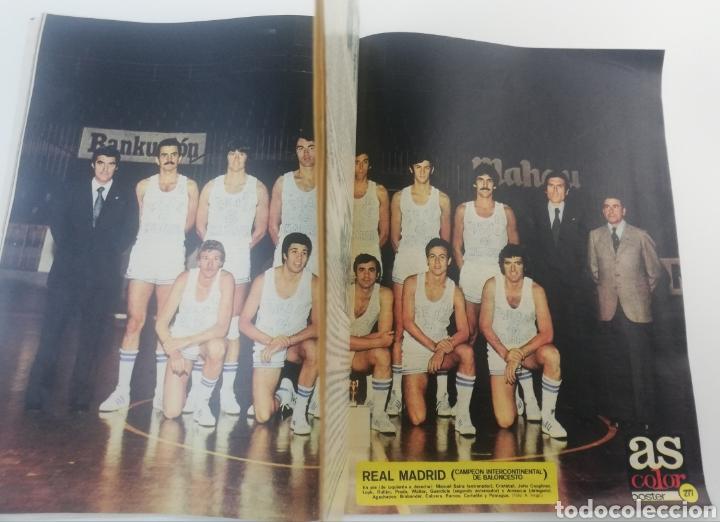 Sammelleidenschaft Sport: DIARIO AS COLOR NUMERO 283, 19 OCTUBRE 1976, POSTER HISTORIA REAL MADRID BALONCESTO, ARKONADA. - Foto 4 - 149214376