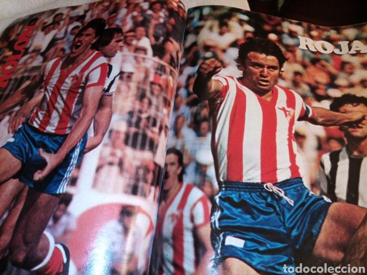 Coleccionismo deportivo: Don Balón. Número 193. Año 1979. Landaburu. Alí. Almería. - Foto 5 - 223145853
